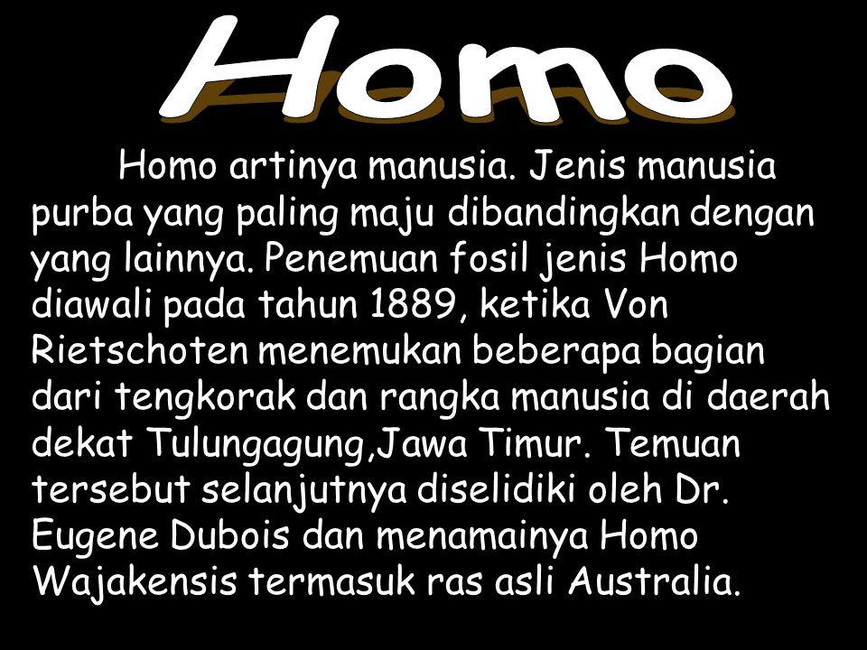 Homo artinya manusia. Jenis manusia purba yang paling maju dibandingkan dengan yang lainnya. Penemuan fosil jenis Homo diawali pada tahun 1889, ketika