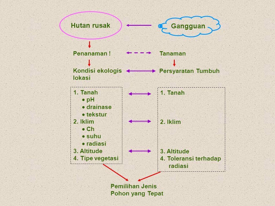 Penentuan Jenis Pohon 1.