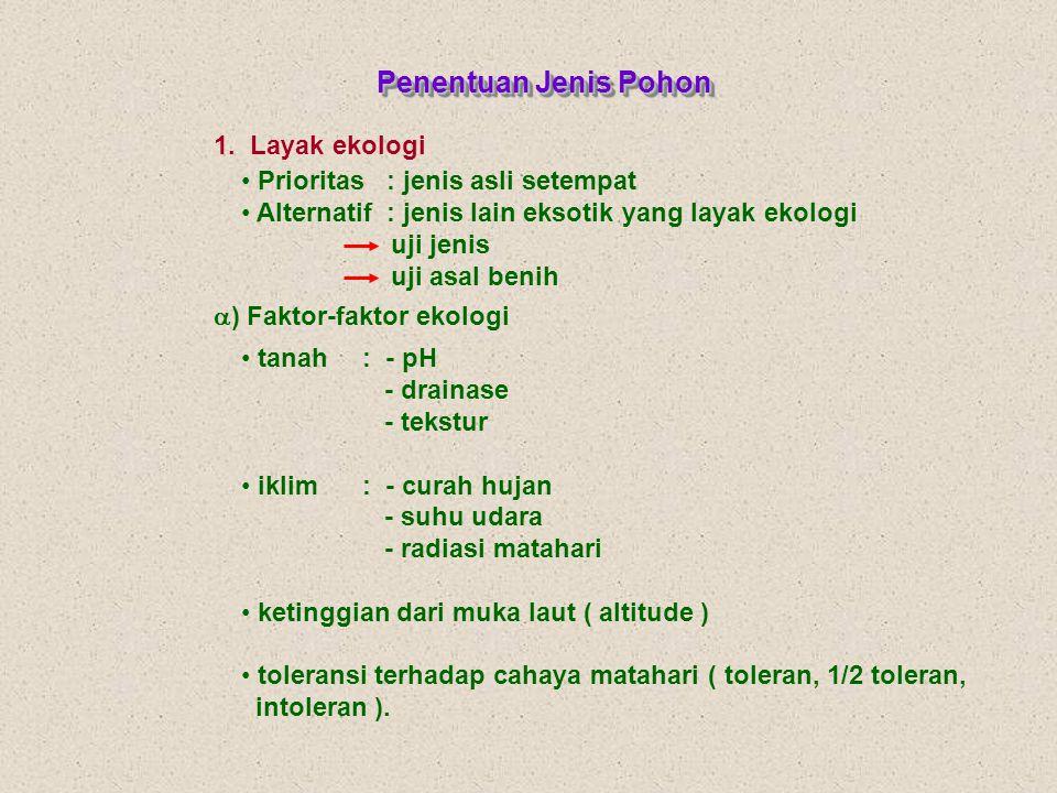 v Jenis-jenis pohon HTI c.Kayu energi Lamtorogung gmelina Mangium Kalianda Turi bakau gamal dsb a.