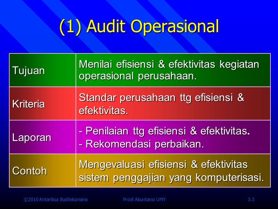 ©2010 Antariksa Budileksmana Prodi Akuntansi UMY 3-3 (1) Audit Operasional Tujuan Menilai efisiensi & efektivitas kegiatan operasional perusahaan.