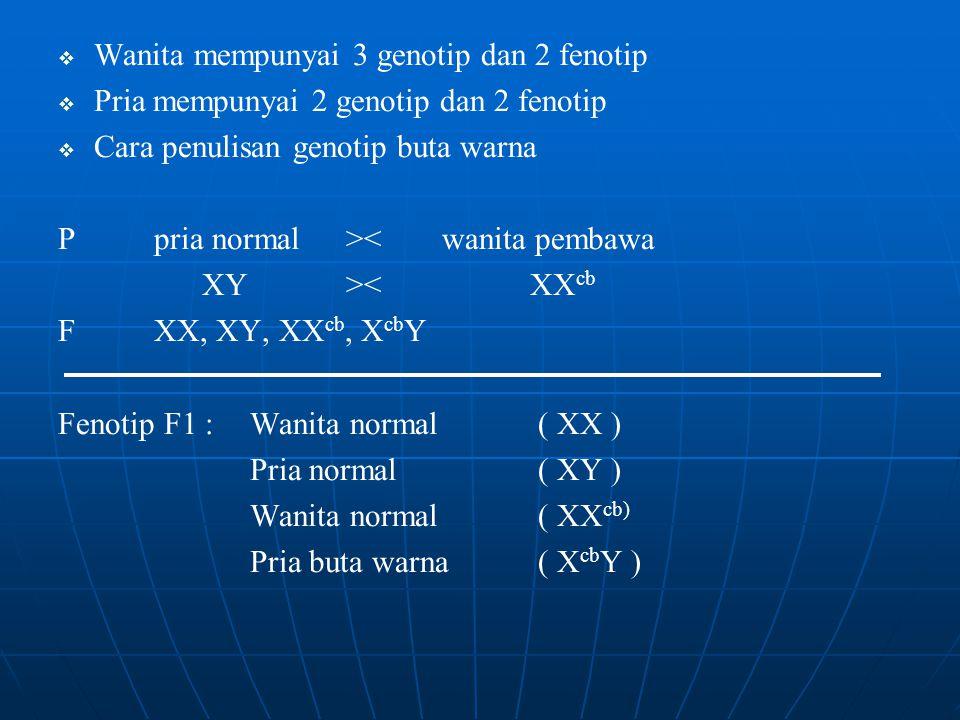  Wanita mempunyai 3 genotip dan 2 fenotip   Pria mempunyai 2 genotip dan 2 fenotip   Cara penulisan genotip buta warna Ppria normal><wanita pembawa XY>< XX cb FXX, XY, XX cb, X cb Y Fenotip F1 :Wanita normal ( XX ) Pria normal( XY ) Wanita normal( XX cb) Pria buta warna( X cb Y )