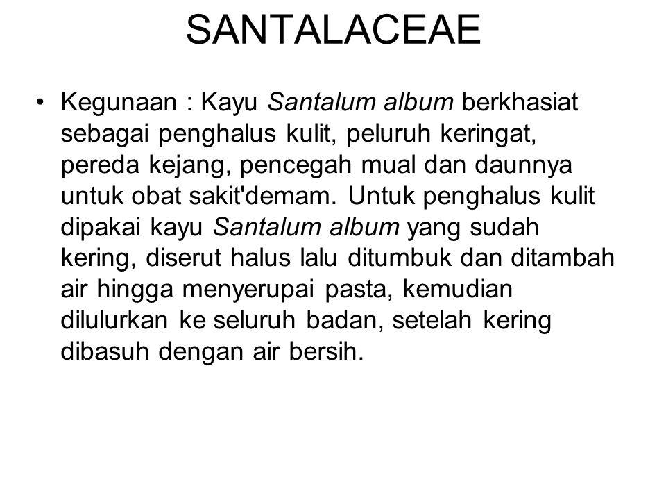 SANTALACEAE Kegunaan : Kayu Santalum album berkhasiat sebagai penghalus kulit, peluruh keringat, pereda kejang, pencegah mual dan daunnya untuk obat s