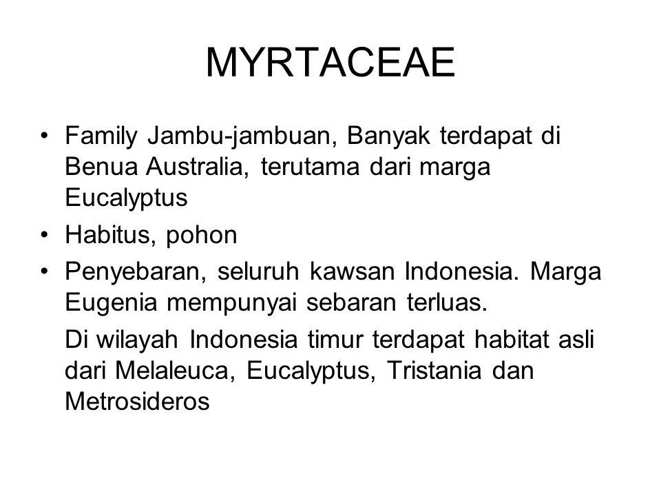 MYRTACEAE Family Jambu-jambuan, Banyak terdapat di Benua Australia, terutama dari marga Eucalyptus Habitus, pohon Penyebaran, seluruh kawsan Indonesia