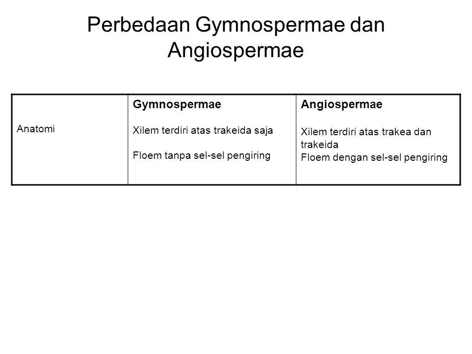 Perbedaan Gymnospermae dan Angiospermae Anatomi Gymnospermae Xilem terdiri atas trakeida saja Floem tanpa sel-sel pengiring Angiospermae Xilem terdiri