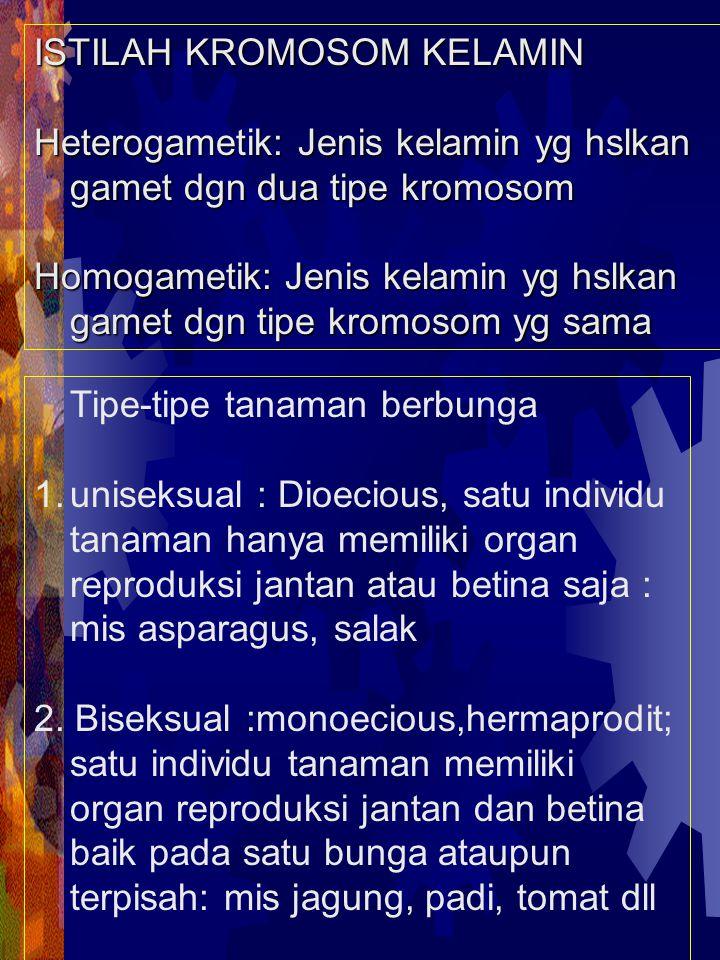 ISTILAH KROMOSOM KELAMIN Heterogametik: Jenis kelamin yg hslkan gamet dgn dua tipe kromosom Homogametik: Jenis kelamin yg hslkan gamet dgn tipe kromos