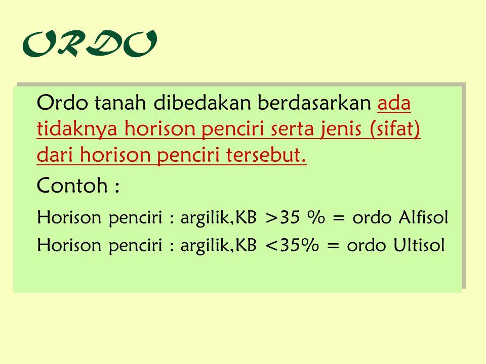 ORDO Ordo tanah dibedakan berdasarkan ada tidaknya horison penciri serta jenis (sifat) dari horison penciri tersebut. Contoh : Horison penciri : argil