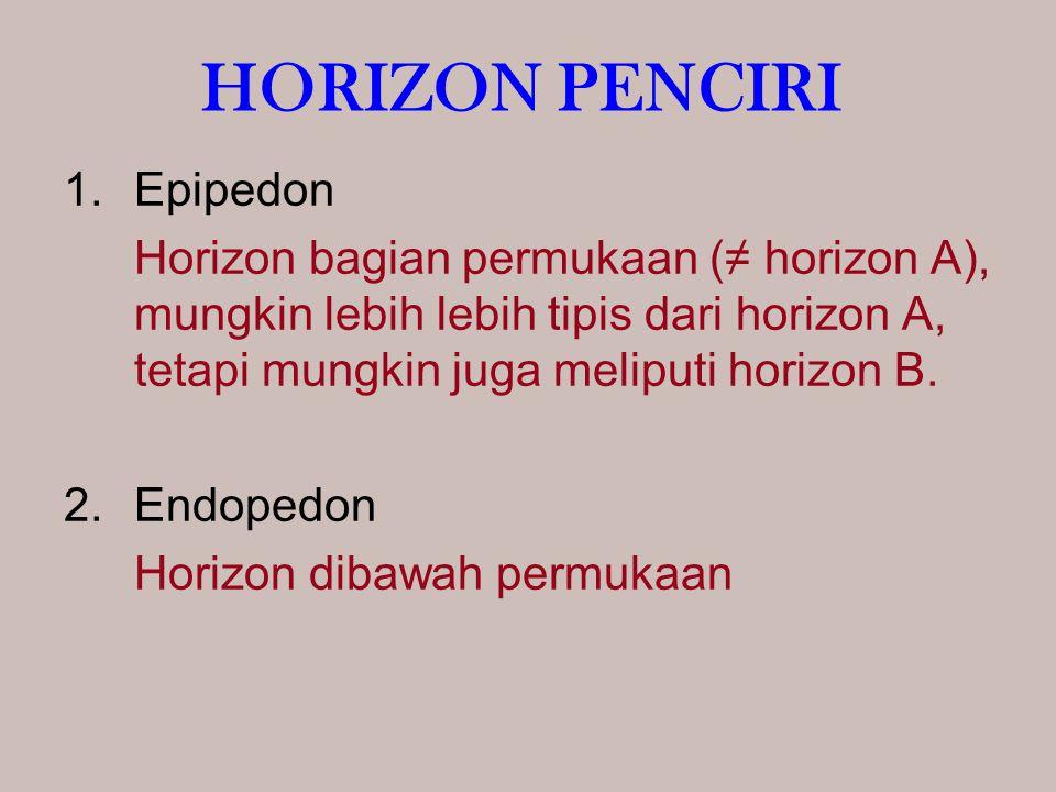 HORIZON PENCIRI 1.Epipedon Horizon bagian permukaan (≠ horizon A), mungkin lebih lebih tipis dari horizon A, tetapi mungkin juga meliputi horizon B. 2