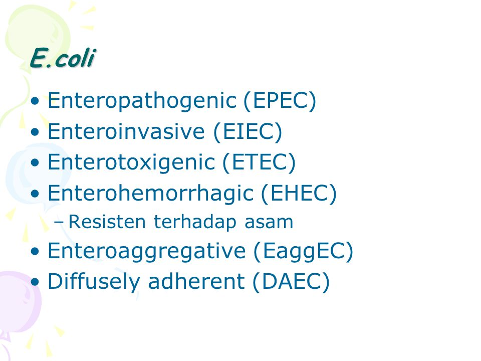 E.coli Enteropathogenic (EPEC) Enteroinvasive (EIEC) Enterotoxigenic (ETEC) Enterohemorrhagic (EHEC) –Resisten terhadap asam Enteroaggregative (EaggEC