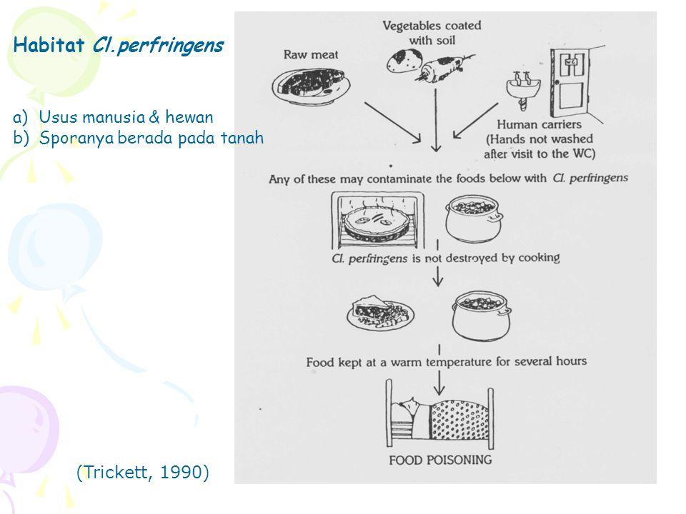 Habitat Cl.perfringens a)Usus manusia & hewan b)Sporanya berada pada tanah (Trickett, 1990)