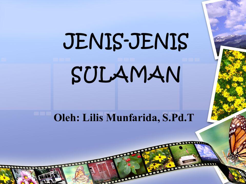JENIS-JENIS SULAMAN Oleh: Lilis Munfarida, S.Pd.T