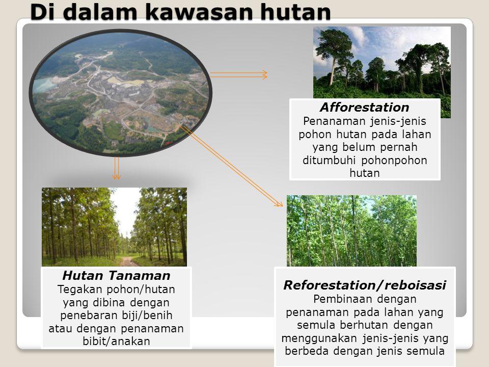 Di dalam kawasan hutan Afforestation Penanaman jenis-jenis pohon hutan pada lahan yang belum pernah ditumbuhi pohonpohon hutan Reforestation/reboisasi