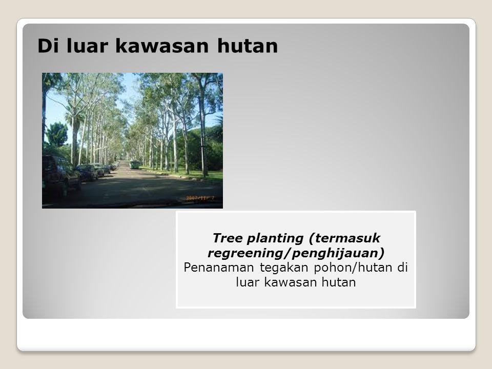 Di luar kawasan hutan Tree planting (termasuk regreening/penghijauan) Penanaman tegakan pohon/hutan di luar kawasan hutan