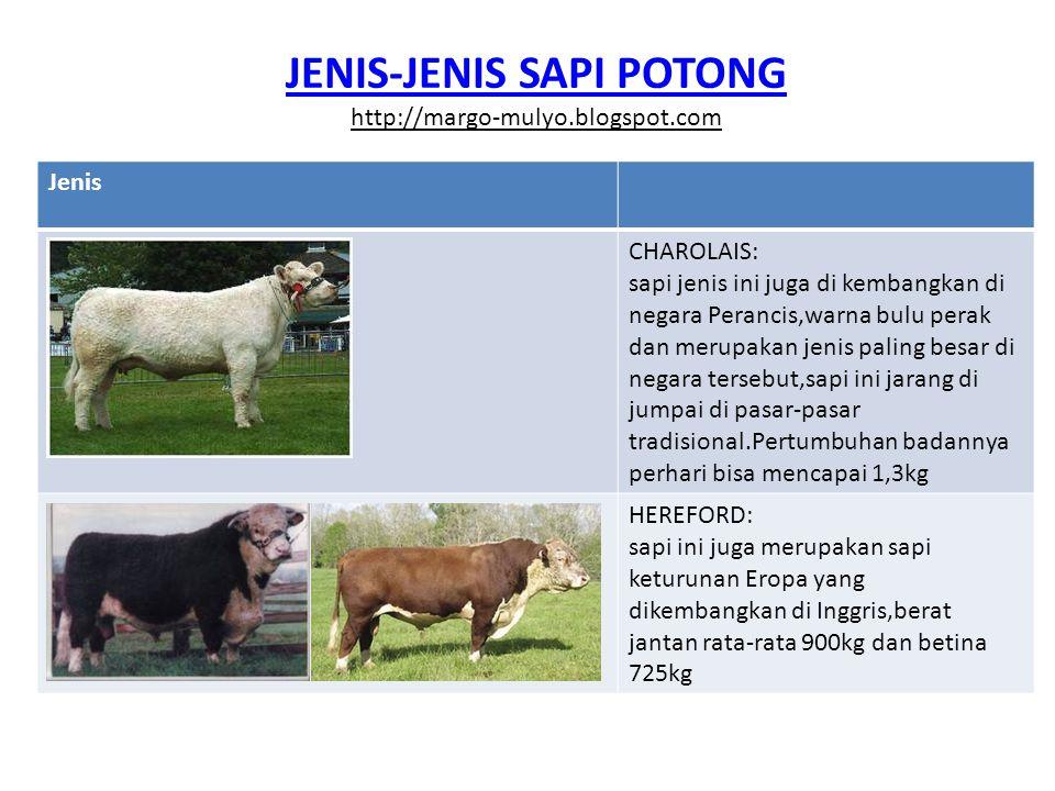 JENIS-JENIS SAPI POTONG http://margo-mulyo.blogspot.com Jenis SHORTHORN: sapi jenis ini sama dengan hereford dan juga dikembangkan di negara Inggris bobot jantan rata-rata 1100kg dan betina 850kg SIMMENTAL: sapi ini berasal dari lembah Simme negara Switzerland,tapi banyak dikembangkan di Australia dan SelandiaBaru,bobot jantan rata-rata 1100kg dan betina 800kg,sapi jenis ini banyak kita jumpai di pasar-pasar tradisional