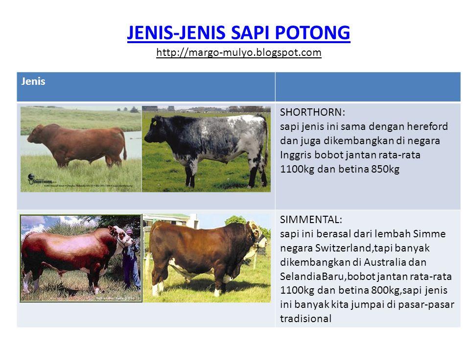 JENIS-JENIS SAPI POTONG http://margo-mulyo.blogspot.com Jenis ABERDEN ANGUS: sapi ini masuk di Indonesia melalui Selandia Baru,tapi awal mulanya berasal dari Skotlandia,bobot jantan rata-rata 900kg dan betina 700kg BRANGUS: sapi ini adalah persilangan betina Brahman dan pejantan Aberden Angus