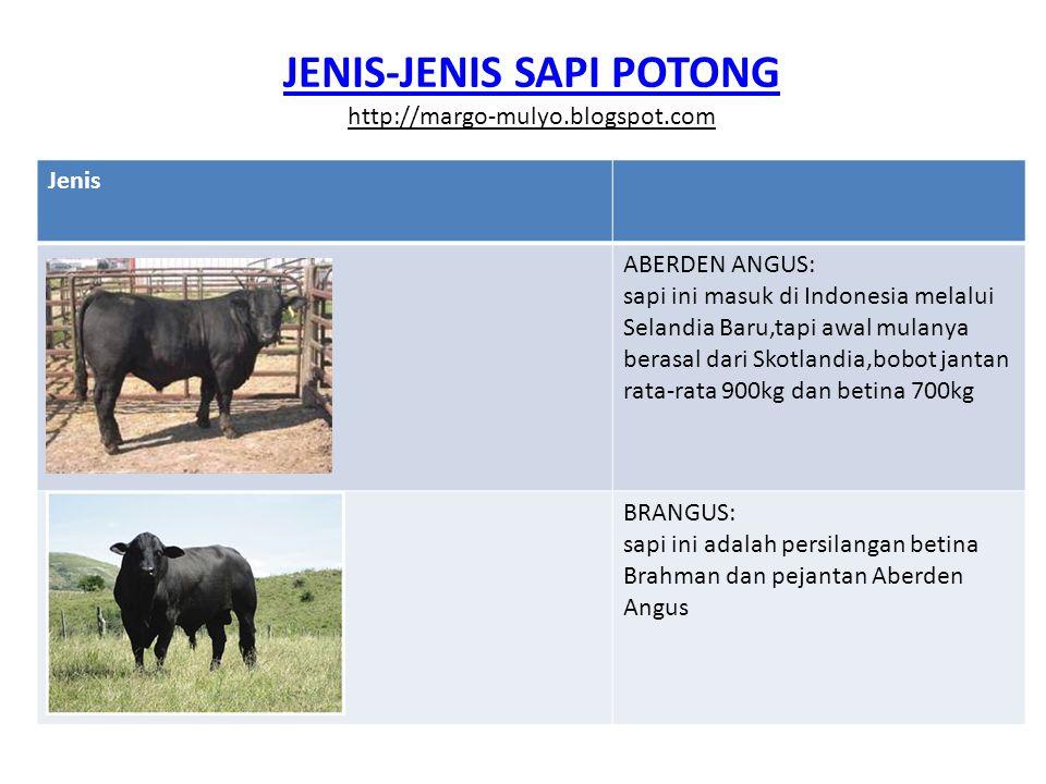 JENIS-JENIS SAPI POTONG http://margo-mulyo.blogspot.com Jenis ABERDEN ANGUS: sapi ini masuk di Indonesia melalui Selandia Baru,tapi awal mulanya beras