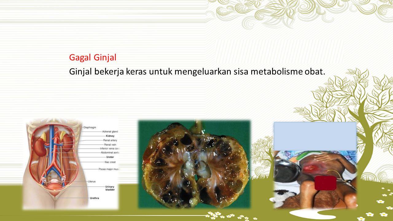 Gagal Ginjal Ginjal bekerja keras untuk mengeluarkan sisa metabolisme obat.