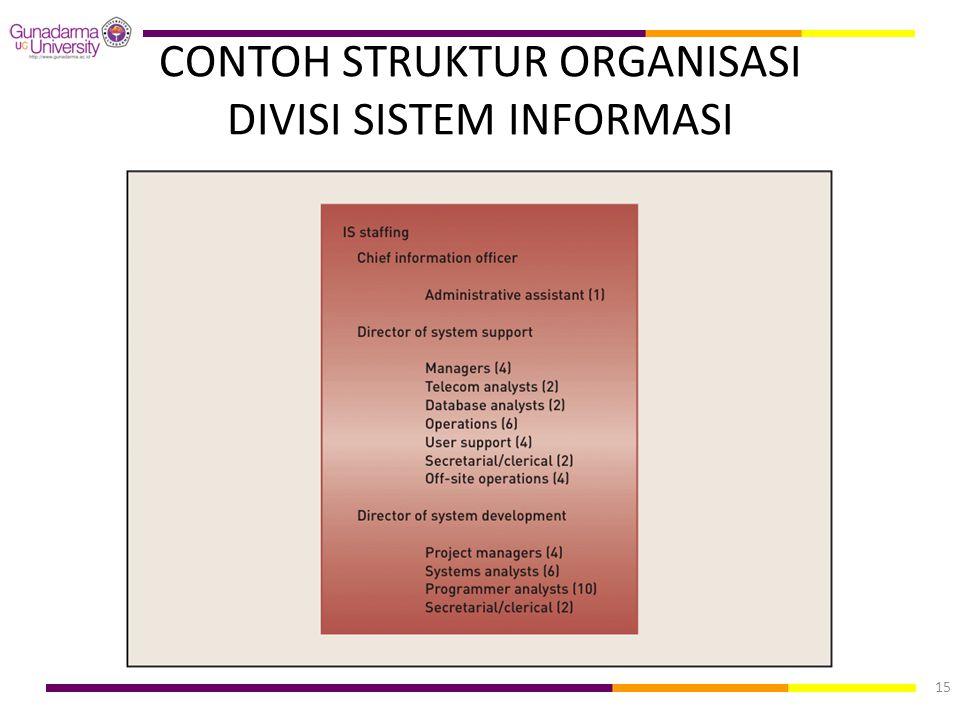 CONTOH STRUKTUR ORGANISASI DIVISI SISTEM INFORMASI 15