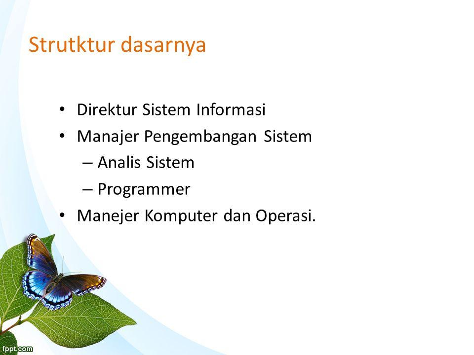 Strutktur dasarnya Direktur Sistem Informasi Manajer Pengembangan Sistem – Analis Sistem – Programmer Manejer Komputer dan Operasi.