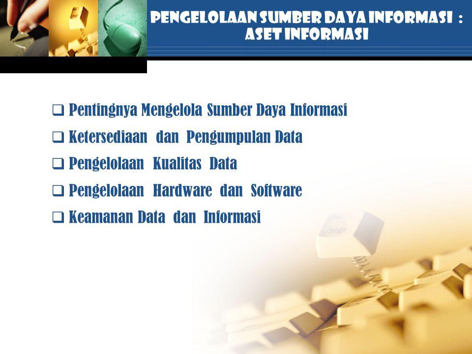 Pengelolaan Sumber Daya Informasi : Aset Informasi  Pentingnya Mengelola Sumber Daya Informasi  Ketersediaan dan Pengumpulan Data  Pengelolaan Kual