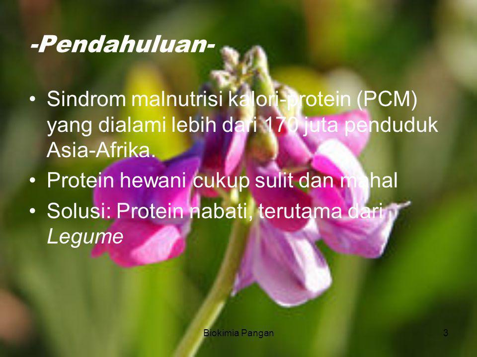 3 -Pendahuluan- Sindrom malnutrisi kalori-protein (PCM) yang dialami lebih dari 170 juta penduduk Asia-Afrika.