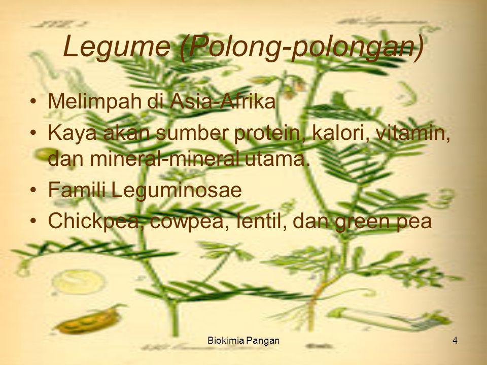 Biokimia Pangan4 Legume (Polong-polongan) Melimpah di Asia-Afrika Kaya akan sumber protein, kalori, vitamin, dan mineral-mineral utama.