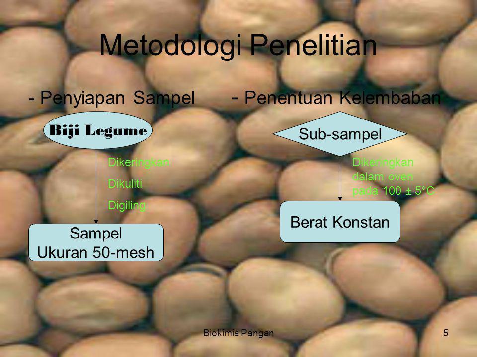 Biokimia Pangan5 Metodologi Penelitian - Penyiapan Sampel - Penentuan Kelembaban Biji Legume Sub-sampel Sampel Ukuran 50-mesh Berat Konstan Dikeringkan Dikuliti Digiling Dikeringkan dalam oven pada 100 ± 5°C