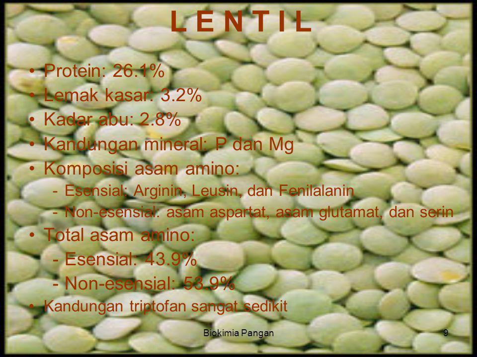 Biokimia Pangan9 L E N T I L Protein: 26.1% Lemak kasar: 3.2% Kadar abu: 2.8% Kandungan mineral: P dan Mg Komposisi asam amino: -Esensial: Arginin, Leusin, dan Fenilalanin -Non-esensial: asam aspartat, asam glutamat, dan serin Total asam amino: -Esensial: 43.9% -Non-esensial: 53.9% Kandungan triptofan sangat sedikit