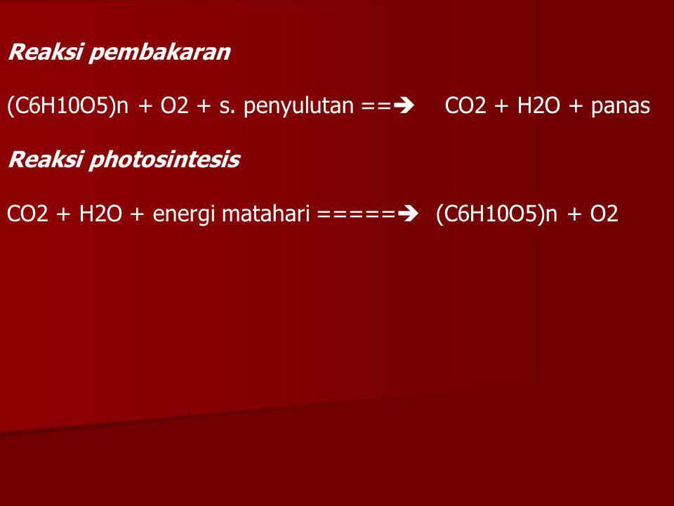 -Biomass burning dipertimbangkan sebagai suatu sumber utama dari trace gas dan partikel aerosol yang memegang peranan penting dalam kimia atmosfir dan iklim.