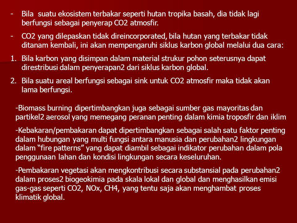 -Bila suatu ekosistem terbakar seperti hutan tropika basah, dia tidak lagi berfungsi sebagai penyerap CO2 atmosfir. -CO2 yang dilepaskan tidak direinc