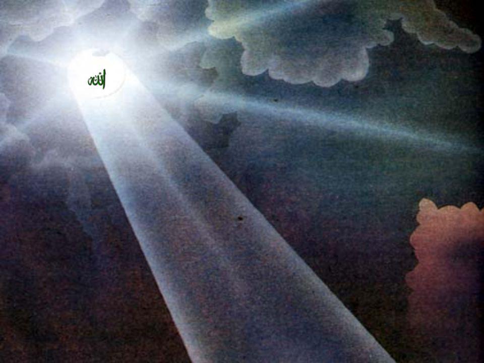 pelindung orang-orang yang beriman. Dia mengeluarkan mereka dari kegelapan menuju cahaya. (QS 2:257)