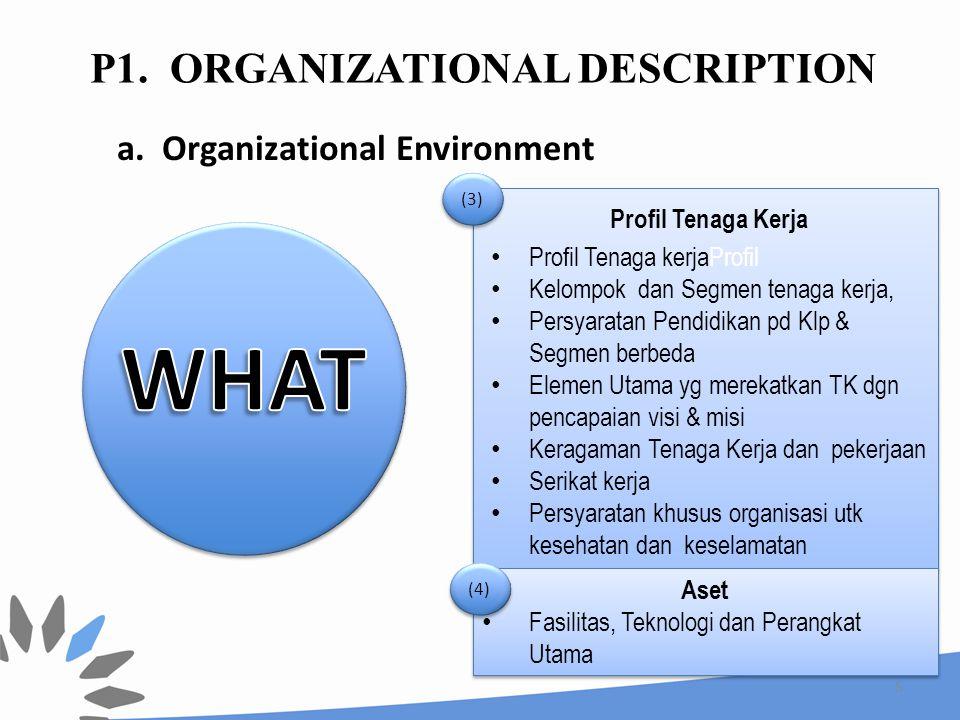 5 Profil Tenaga Kerja Profil Tenaga kerjaProfil Kelompok dan Segmen tenaga kerja, Persyaratan Pendidikan pd Klp & Segmen berbeda Elemen Utama yg merek