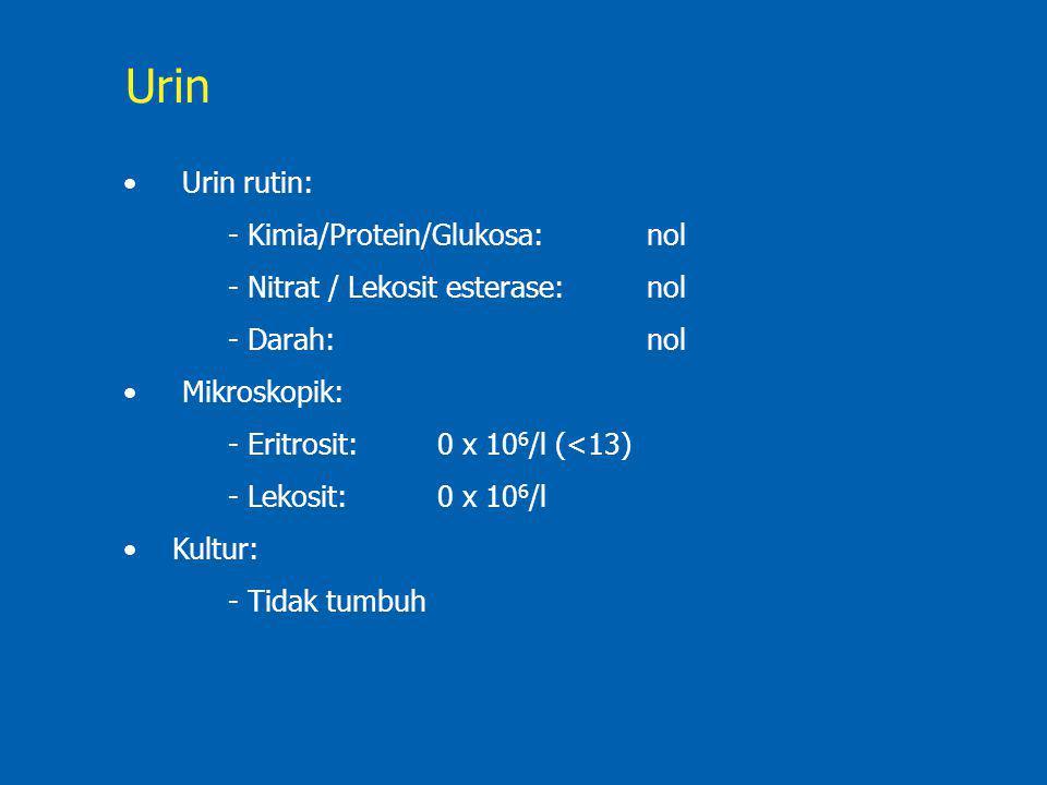 Urin rutin: - Kimia/Protein/Glukosa: nol - Nitrat / Lekosit esterase:nol - Darah: nol Mikroskopik: - Eritrosit:0 x 10 6 /l (<13) - Lekosit:0 x 10 6 /l