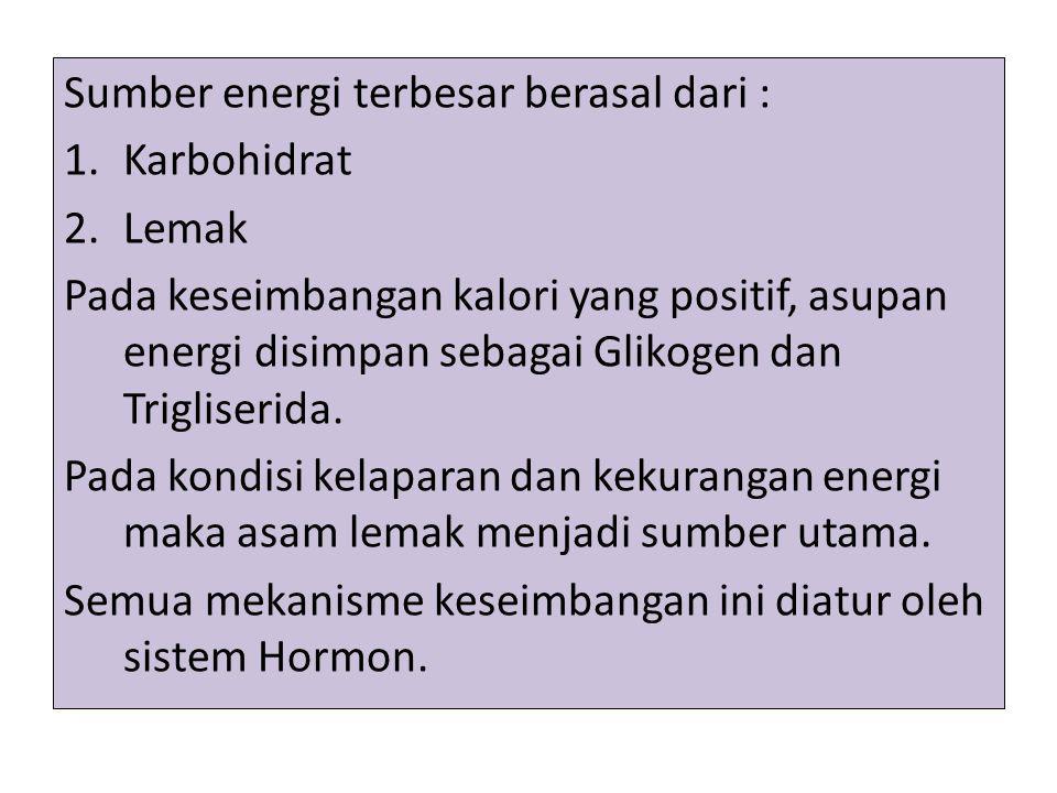 Sumber energi terbesar berasal dari : 1.Karbohidrat 2.Lemak Pada keseimbangan kalori yang positif, asupan energi disimpan sebagai Glikogen dan Triglis