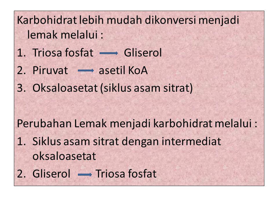 Karbohidrat lebih mudah dikonversi menjadi lemak melalui : 1.Triosa fosfat Gliserol 2.Piruvat asetil KoA 3.Oksaloasetat (siklus asam sitrat) Perubahan