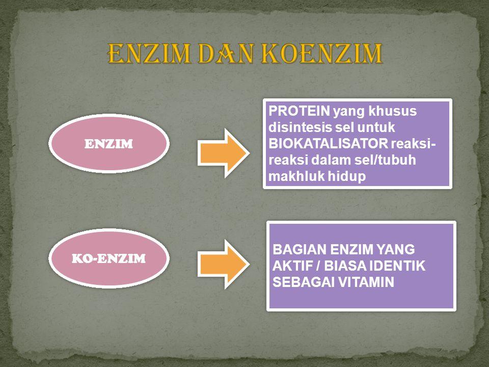 ENZIM KO-ENZIM PROTEIN yang khusus disintesis sel untuk BIOKATALISATOR reaksi- reaksi dalam sel/tubuh makhluk hidup BAGIAN ENZIM YANG AKTIF / BIASA ID
