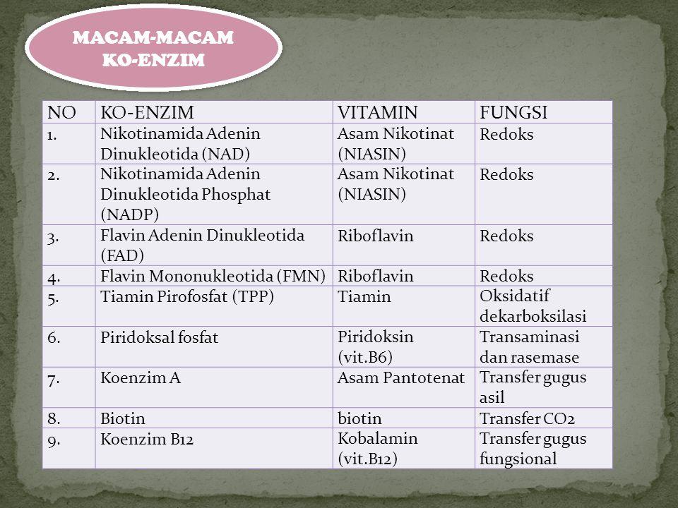 MACAM-MACAM KO-ENZIM NOKO-ENZIMVITAMINFUNGSI 1.Nikotinamida Adenin Dinukleotida (NAD) Asam Nikotinat (NIASIN) Redoks 2.Nikotinamida Adenin Dinukleotid