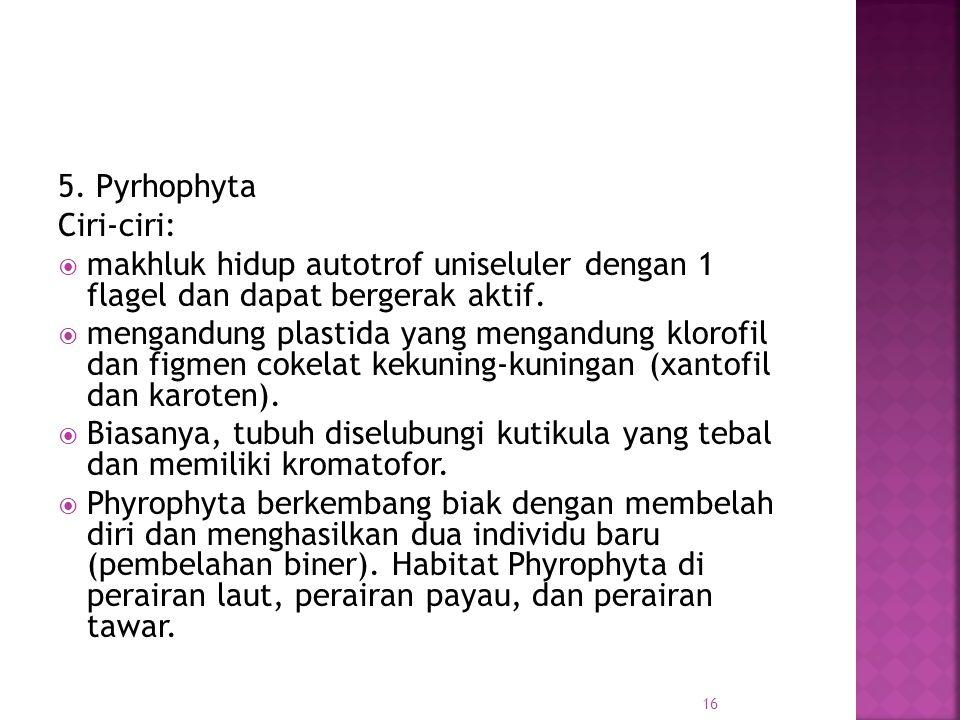 5. Pyrhophyta Ciri-ciri:  makhluk hidup autotrof uniseluler dengan 1 flagel dan dapat bergerak aktif.  mengandung plastida yang mengandung klorofil