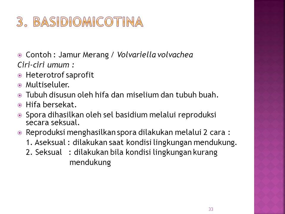  Contoh : Jamur Merang / Volvariella volvachea Ciri-ciri umum :  Heterotrof saprofit  Multiseluler.