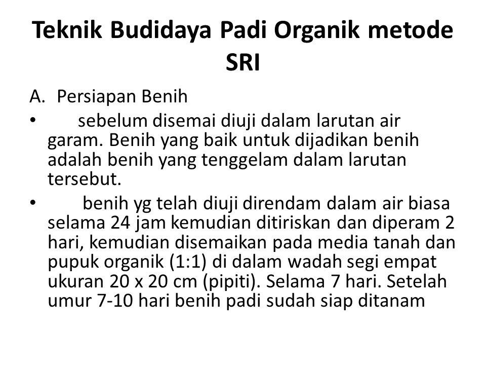 Teknik Budidaya Padi Organik metode SRI A.Persiapan Benih sebelum disemai diuji dalam larutan air garam. Benih yang baik untuk dijadikan benih adalah