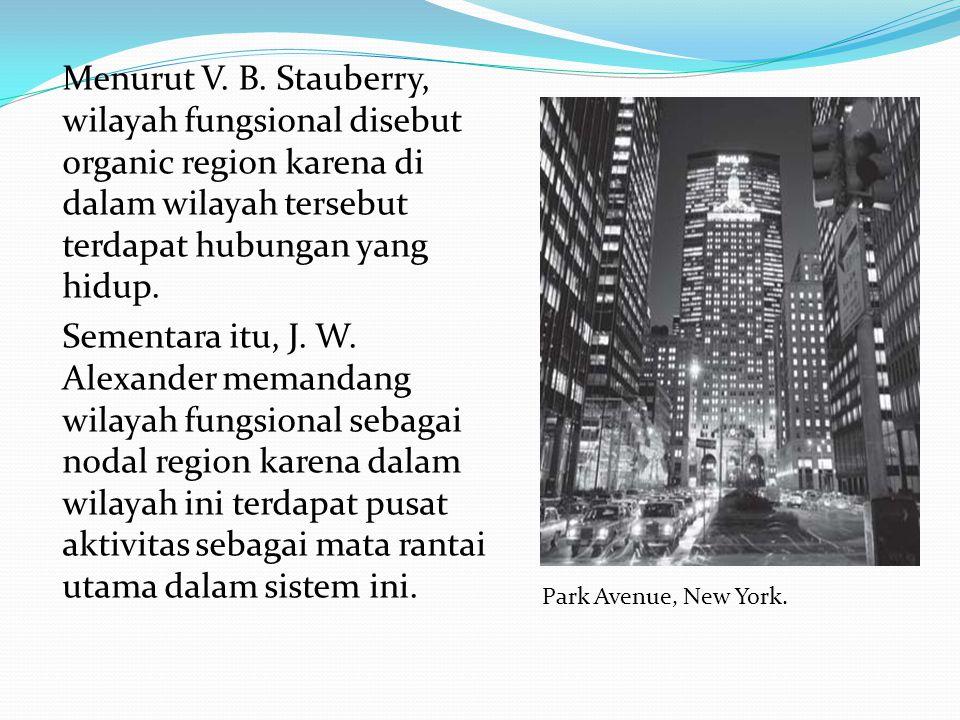Menurut V. B. Stauberry, wilayah fungsional disebut organic region karena di dalam wilayah tersebut terdapat hubungan yang hidup. Sementara itu, J. W.