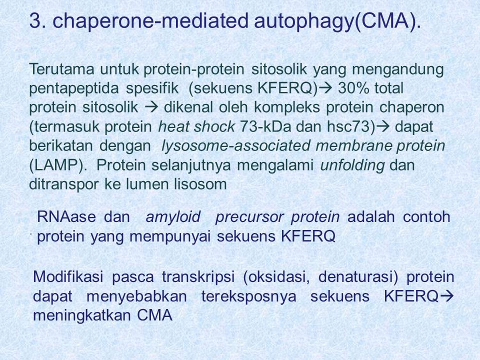 3.chaperone-mediated autophagy(CMA).
