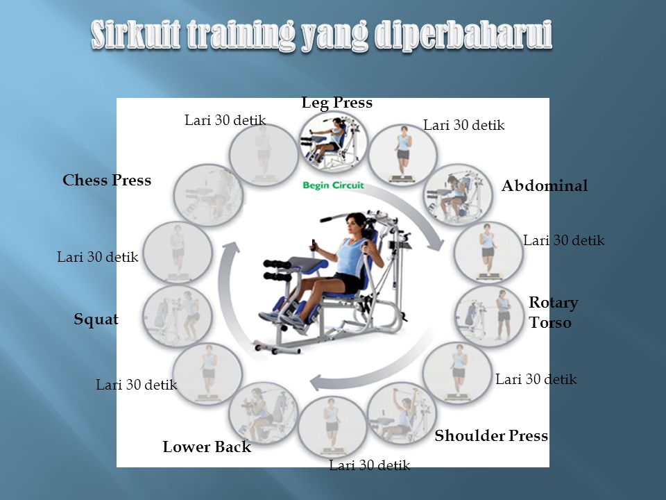 Twist Leg Press Abdominal Shoulder Press Lower Back Squat Chess Press Lari 30 detik Rotary Torso