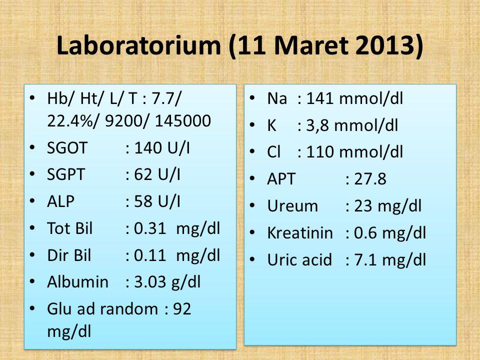 Laboratorium (11 Maret 2013) Hb/ Ht/ L/ T : 7.7/ 22.4%/ 9200/ 145000 SGOT : 140 U/I SGPT: 62 U/I ALP: 58 U/I Tot Bil: 0.31 mg/dl Dir Bil: 0.11 mg/dl A
