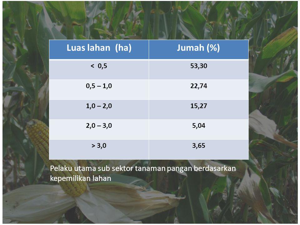 Luas lahan (ha)Jumah (%) < 0,553,30 0,5 – 1,022,74 1,0 – 2,015,27 2,0 – 3,05,04 > 3,03,65 Pelaku utama sub sektor tanaman pangan berdasarkan kepemilik