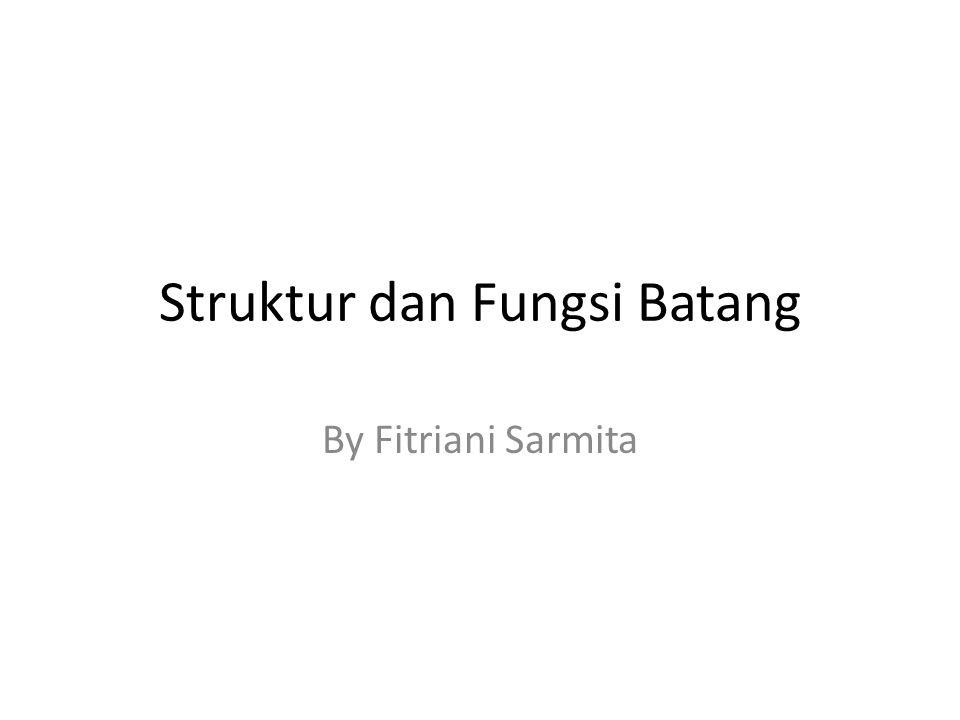 Struktur dan Fungsi Batang By Fitriani Sarmita