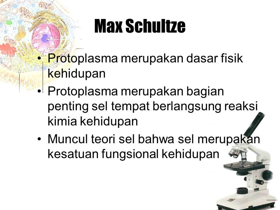 Max Schultze Protoplasma merupakan dasar fisik kehidupan Protoplasma merupakan bagian penting sel tempat berlangsung reaksi kimia kehidupan Muncul teo