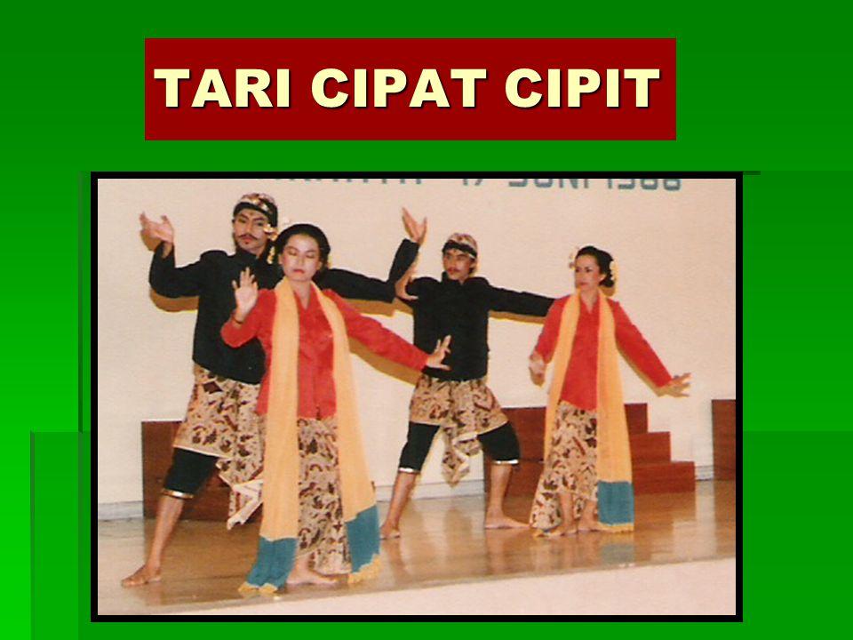 TARI TAYUB