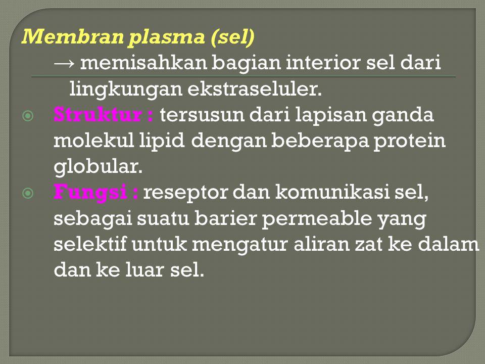 Membran plasma (sel) → memisahkan bagian interior sel dari lingkungan ekstraseluler.  Struktur : tersusun dari lapisan ganda molekul lipid dengan beb