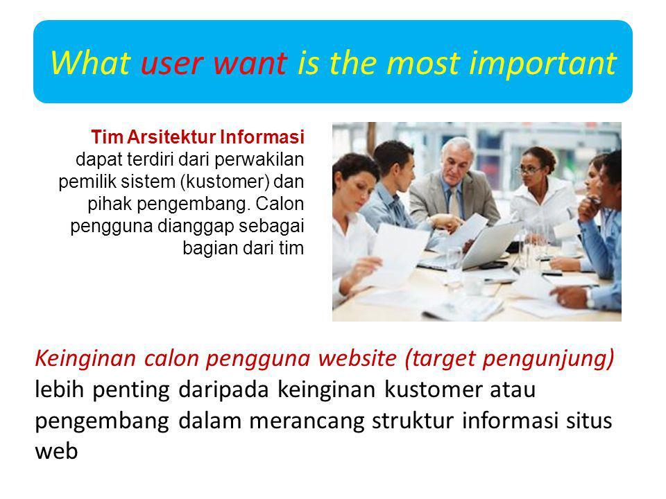 What user want is the most important Keinginan calon pengguna website (target pengunjung) lebih penting daripada keinginan kustomer atau pengembang da