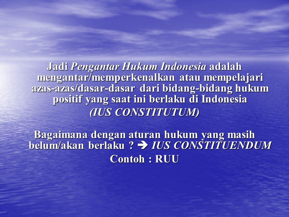 Jadi Pengantar Hukum Indonesia adalah mengantar/memperkenalkan atau mempelajari azas-azas/dasar-dasar dari bidang-bidang hukum positif yang saat ini b